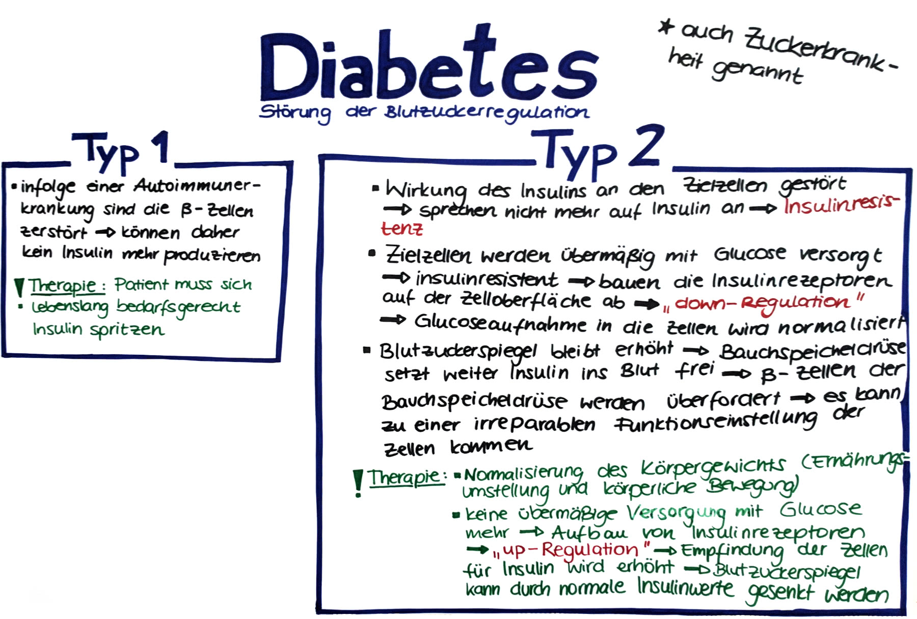 Hypoglykämie – die unterschätze Gefahr bei Diabetes mellitus
