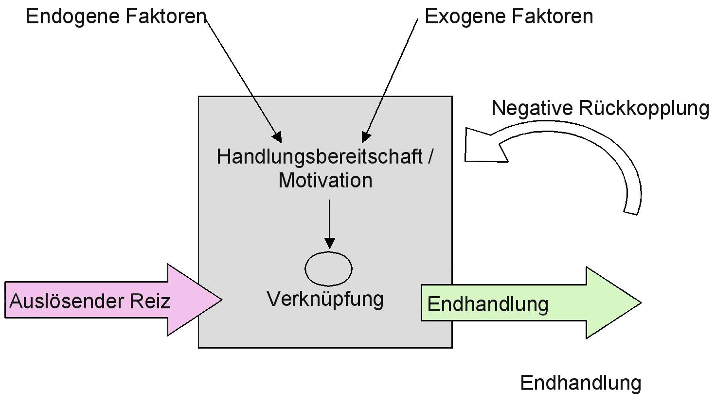 Verhaltensbiologie: Handlungsbereitschaft und Motivation